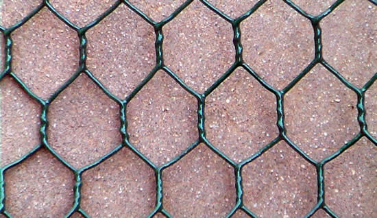 Green Vinyl Coated Galvanized Chicken Net of 2 inch Holes